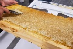 Alveole-Honey-Extracting-Workshop-6