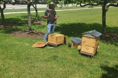 Hives5
